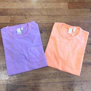 夏カラーTシャツ