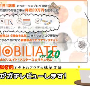 ホビリエイト2.0【限定特典付き】辛口感想レビュー