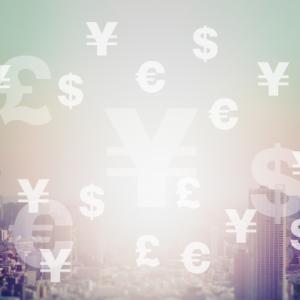 自国通貨以外の資産の必要性