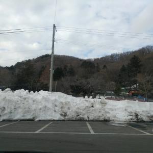 人間界に疲れたので山に行きました。