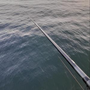 前打ちで根魚釣り