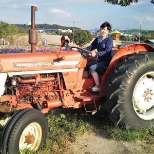 不登校エテに畑で野菜作りとか農作業的な事、体験させてみたい