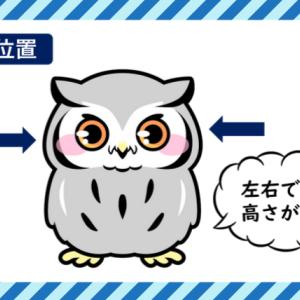 フクロウの耳|聴覚が良い理由は?左右非対称な耳の高さで音源定位