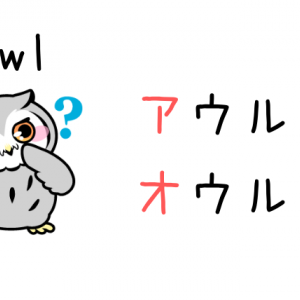 「owl」の読み方・発音|アウル・オウル?正しい読み方は○○