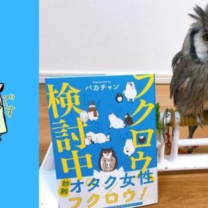 フクロウのくるる、漫画本で紹介される!【フクロウ、検討中】