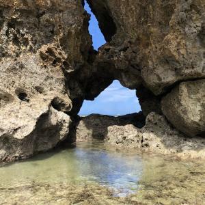 【沖縄のオカッパリ事情】ルアーで釣りたいなら「北」に行け