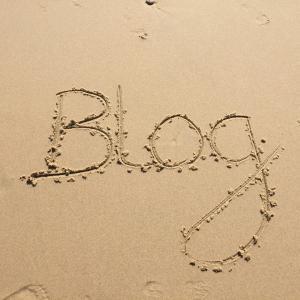 魚釣り関連ブログでの収益性はどのくらい?