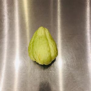 謎の野菜をどうする【ミニマリスト志望主婦の使い切る暮らし】