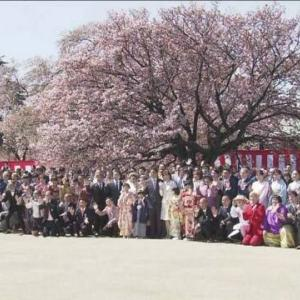 巨人小笠原、桜を見る会を開催する