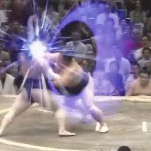 【速報】淫夢の語録だけで相撲が取れることが判明する