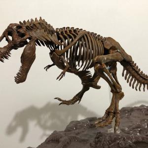 ティラノサウルスのプラモwww