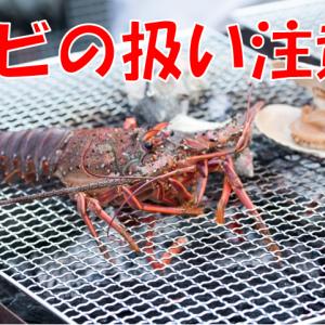 オランダ活ロブスター禁止決定_寿司で残酷な日本国と言われた時の対処方法