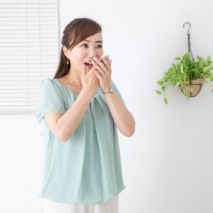 カロリーが低いスイカダイエットやってみました☆MECダイエット170日目結果発表☆