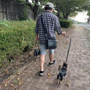 【ほぼ一回休み】秋のお散歩で記念撮影