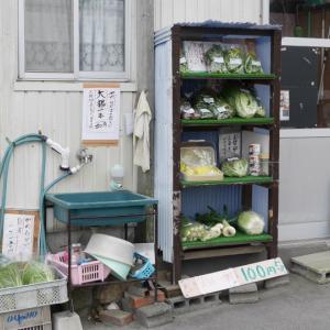 あおぞらファーム 無人販売所(吉田町)