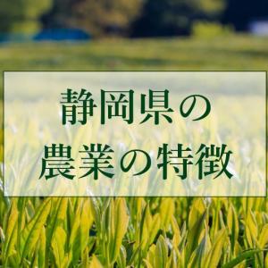 静岡県の農業の特徴とは?