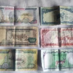 ネパールの通貨について