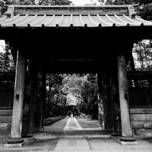 鎌倉旅行⑧
