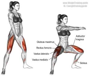 加齢で最初に衰える筋肉:下肢内転筋群