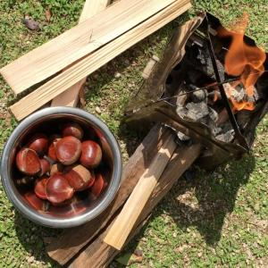 秋の味覚・焼き栗バーベキュー。炭火で簡単・昔ながらの味