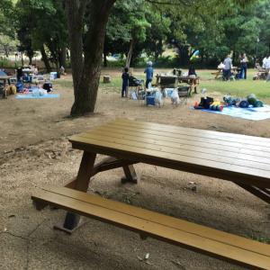 オススメの市ノ池キャンプ場の紹介。遊具が充実して子どもが遊べる