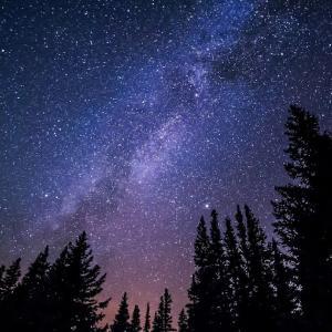 冒険心をくすぐる!子どもと夜のお散歩