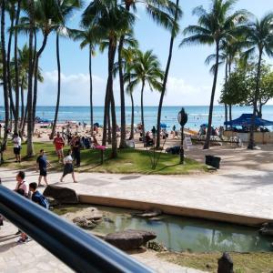 【旅行記】2/21-24 ハワイ ANAビジネスクラス一人旅(観光編①)
