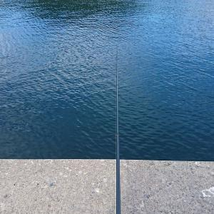 太平洋サケ釣り初戦。20190921