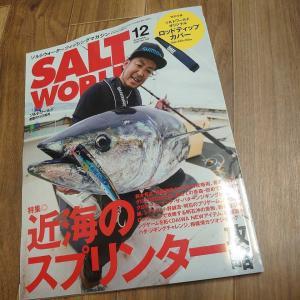 これはお得かも!SALT WORLD 12月号がアツイ!
