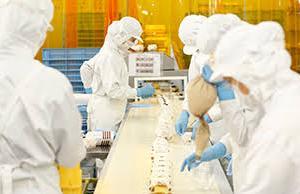 【食品工場】就職や転職に知っておきたいことまとめ!【交代勤務】