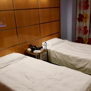 【感想】ホテルアルバーニに泊まってきました!部屋やサービスを紹介【ローマ】
