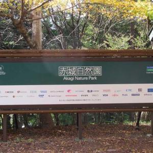赤城自然園 秋