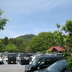 新緑の嵐山渓谷から大平山・仙元山へ