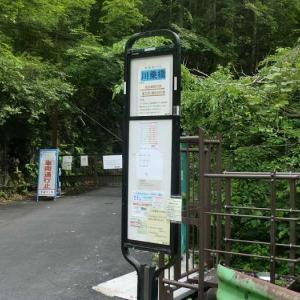 奥多摩・川苔山から本仁田山へ 夏山への鍛錬だぁ
