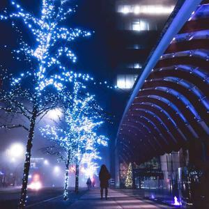 【費用公開】冬休みに海外旅行でカナダのバンクーバーへ行こう!