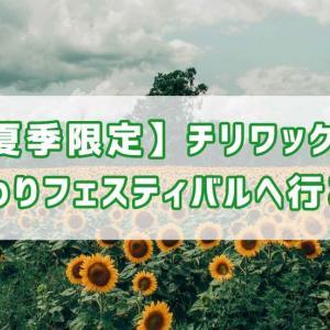 【夏季限定】チリワックのひまわりフェスティバルへ行こう!