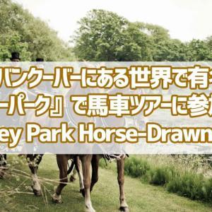 カナダのバンクーバーにある世界で有名な公園『スタンレーパーク』で馬車ツアーに参加しよう!【Stanley Park Horse-Drawn Tours】