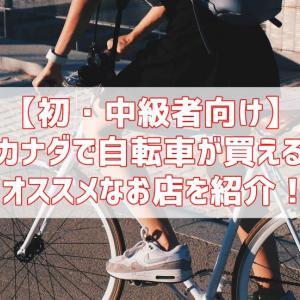 【初・中級者向け】カナダで自転車が買えるオススメなお店を紹介!