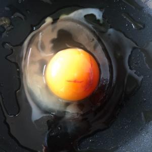 卵に血が混じっていた…食べる or 食べない?