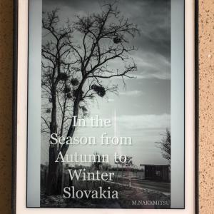スロバキアの写真集を紹介