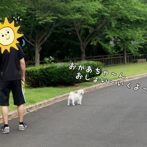 久しぶりのダム散歩 (1)