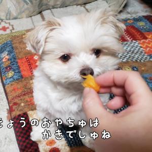 あっΣ(-∀-;)