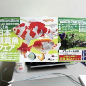 2013年 日本観賞魚フェア