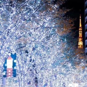 【最新フォトレポート】けやき坂イルミネーションの様子(六本木ヒルズクリスマス2019)