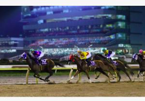 【必見】競馬場の運営でボロ儲けしている東京都競馬社について