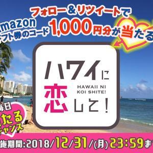 毎日当たるチャンス「Amazonギフト券の1,000円分」など懸賞情報