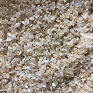 肌をきれいにするルール⑥お米は分づき米がおすすめ!