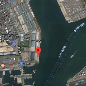2019.3.25 苫小牧西港南埠頭 ニシンはいるかな?
