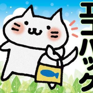 韓国語で「エコバッグ」は何という?韓国マートでのお買い物の時のレジ袋、カード専用レジに注意を!