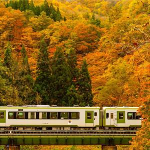 紅葉と湖と列車と
